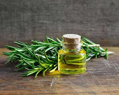 Miracle of Rosemary Oil