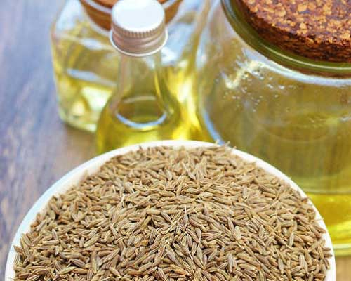 What is Caraway Oil
