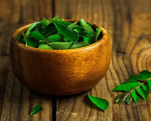 About Curry Leaf Oil