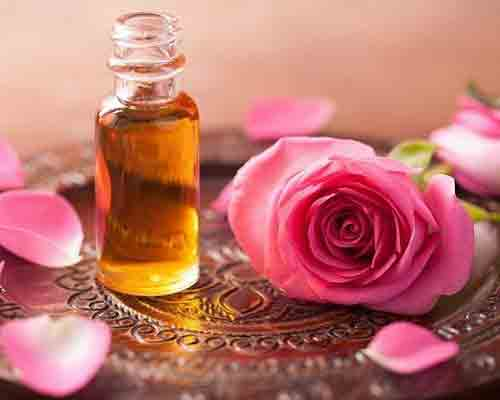 What is Rose Oil