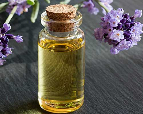 What is Lavender Oil