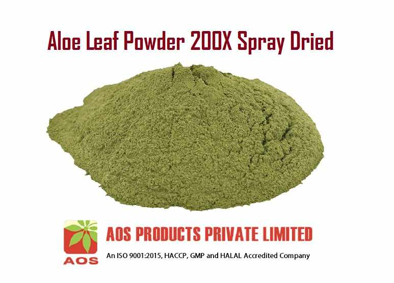 Aloe Leaf Powder