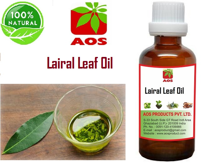 18 Uses of Laurel Leaf Oil, Health Benefits for insect repellant and Scent