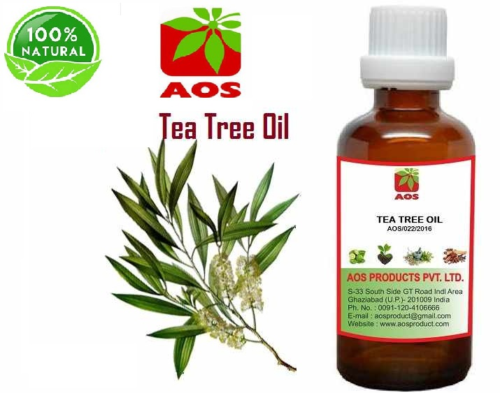 18 Unmatched benefits and Uses of Tea Tree Oil for Skin