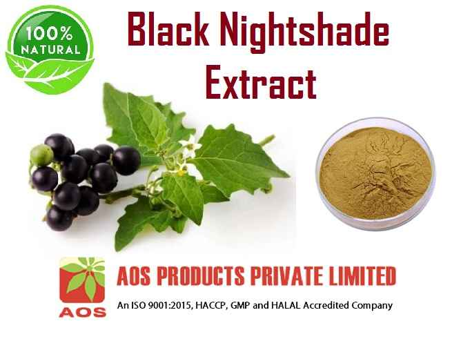 Black Nightshade Extract