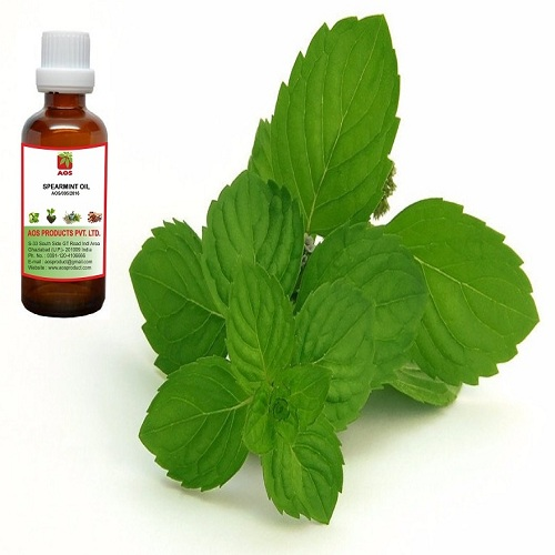 Market Report Spearmint oil