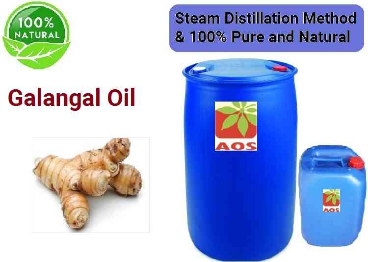 Galangal Oil