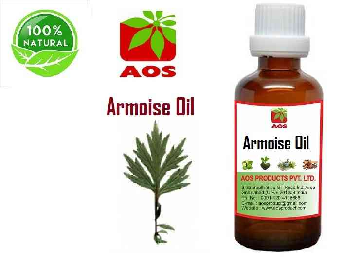 8 Unique Benefits and Uses of Armoise or Mugwort Oil - Factory Price