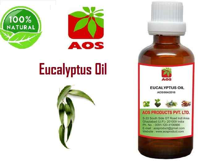 9 Uses, benefits Eucalyptus Oil or Nilgiri Oil in Cold, Skin