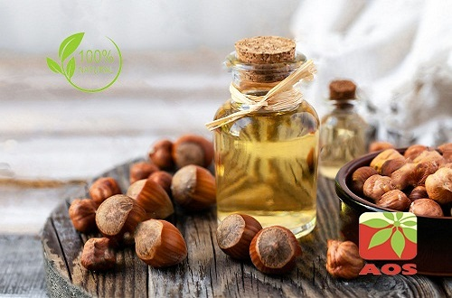 Hazelnut Oil Uses Benefits Aos Products Manufacturer
